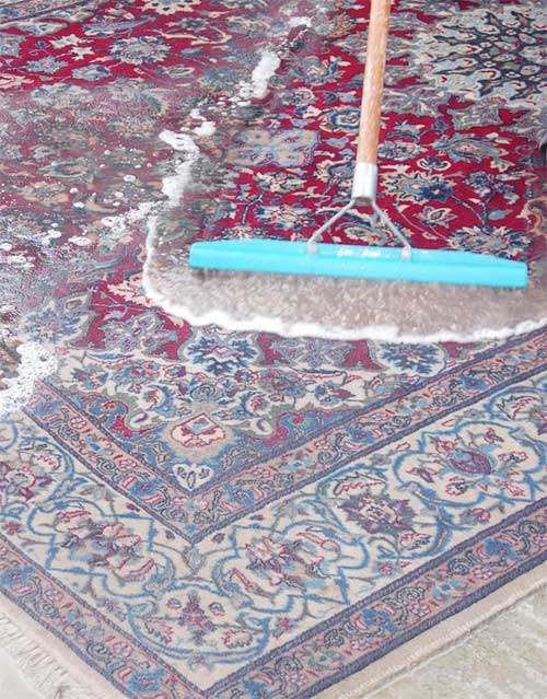 Oriental Rug Cleaning Rockville Area Cleaners Pickup Delivery
