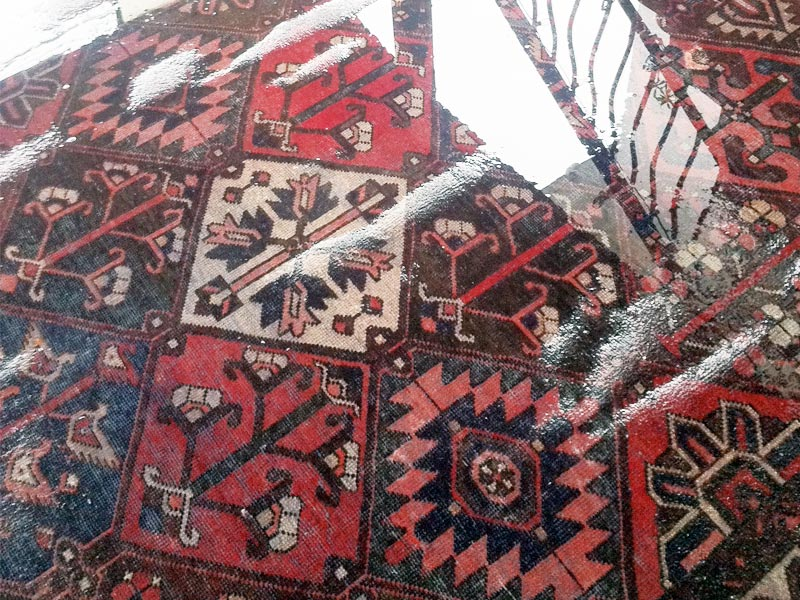 Wet Rug Flood Damage