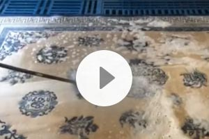 Rug Washing Video